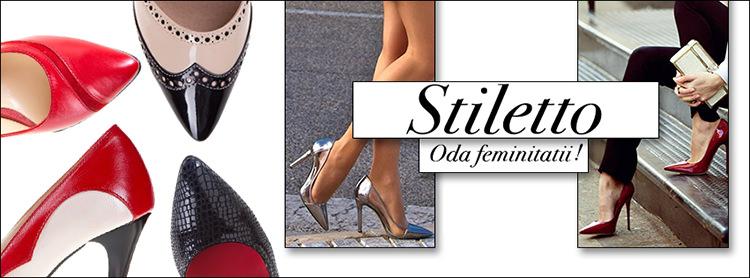 Pantofi cu toc online