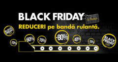Campanie Flanco Black Friday 2016