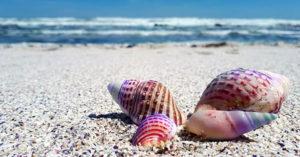 Oferte vacanțe la mare